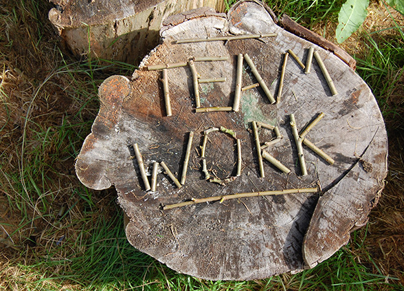 team-work-twigs
