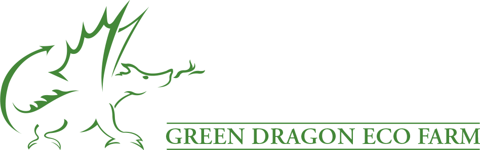 Green Dragon Corporate Space logo